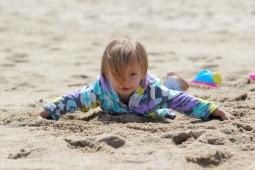 Baby Beachcomber