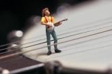 Banjoist on a Banjo